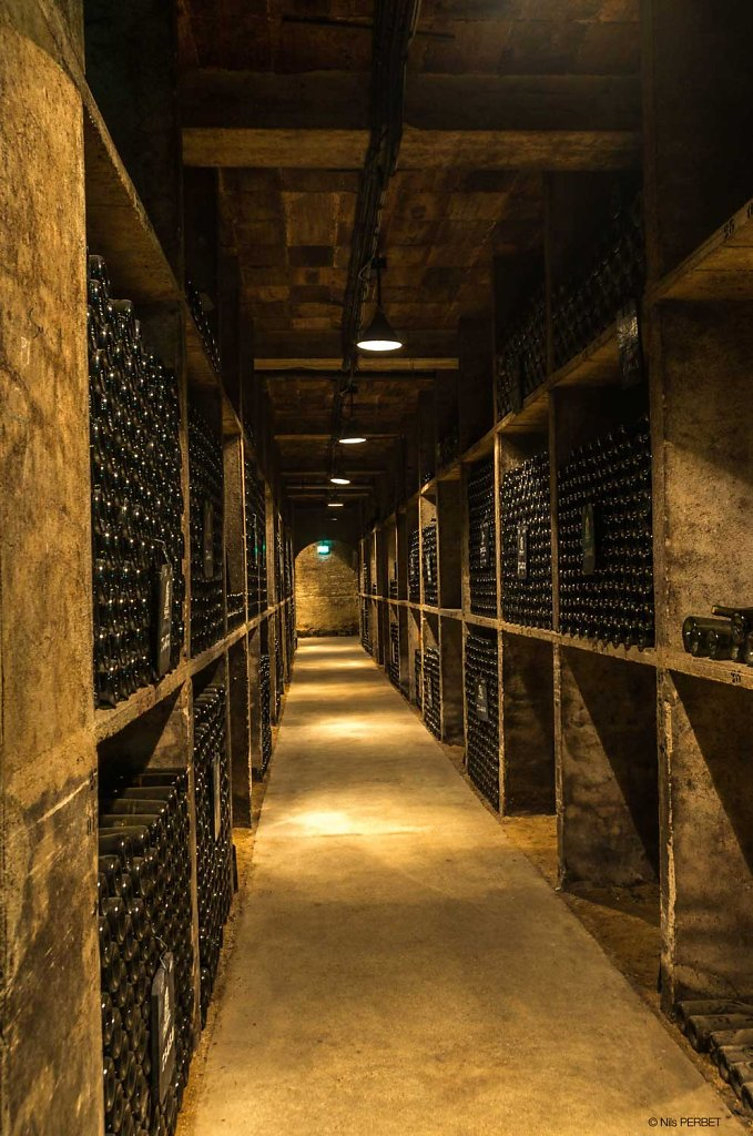 Cellar Of Patriarche Pere Et Fils Winery, Beaune, Burgundy
